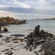 A rocky beach line landscape — Stock Photo #68943455