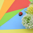 Green, white and yellow artificial flower on orange, red, blue and green background give romantic look concept with two ladybird — Stock Photo #79324916