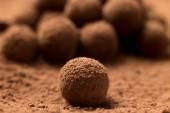 Appetizing black chocolate truffle — Stock Photo