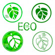Ecological organic icons — Stockvector  #70820121