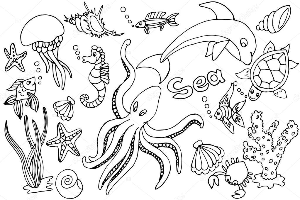 Морской конёк 47 фото  fotostranikcom