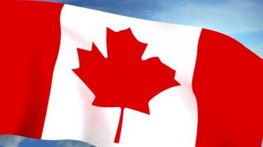 Canadian Flag Closeup Waving Against Blue Sky Seamless Loop CG — Stock Video