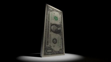 Dollar Currency Collapse Animation — Stock Video