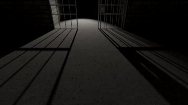 Prison bars cell closing long shadow — Stock Video