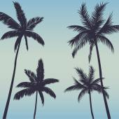 Palm trees background — Stock Vector