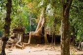 The temple complex of Angkor. — Foto Stock