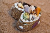 Wedding rings and shells — Stock Photo