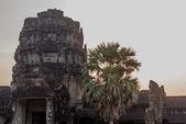 Angkor Wat Tapınağı kompleksinin. — Stok fotoğraf
