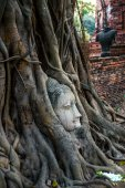 Buddha head covered by roots of a tree at Ayutthaya province in Thailand — Stock Photo