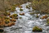 Lazy river in California — Fotografia Stock