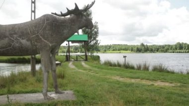 Statue of a moose at the lake. — Stock Video