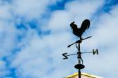 Black weathervane in the form of a rooster — Stock Photo