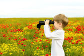 Boy in a field with binoculars — Stock Photo