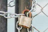 Bloqueo en una cadena — Foto de Stock