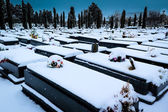 Snowing in the cemetery — Stock Photo