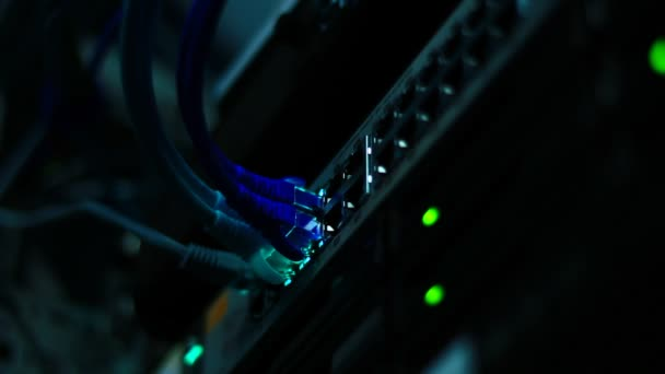 Cables on network server. — Vídeo de stock