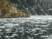 Glacier Bay National Park, Alaska, USA — Stock Photo