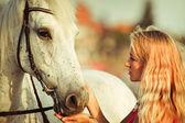 Young woman near the horse — Fotografia Stock
