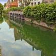 Green view of the canal of old part in Bruges. — Stock Photo #78006746