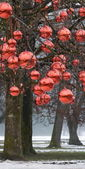 Christmas tree with large group of decorations in Hellbrunn market — Stock Photo