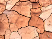 Close up of dry cracked mud on a hot day — 图库照片