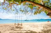 Swing hanging under the tree on the beach — Stock Photo