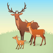 A deer, a doe and a fawn — Stock Vector
