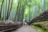 Arashiyama Bamboo Path, Japan — Foto de Stock