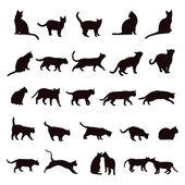 Cat set — Stock Vector