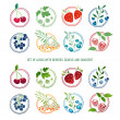 Set of logos, signs, badges, labels with berries and herbs. Simple color and gradient. Template design. Cherries, blueberries, strawberries, gooseberries, rowan, currant, raspberry. Vector. — Stock Vector #70174157