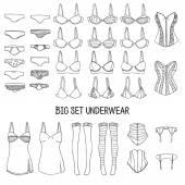Big set of underwear — Stock Vector