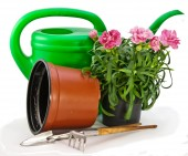 Garden tools and cloves in a pot — Stock Photo