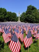 United States memorial day photography . — Stock Photo