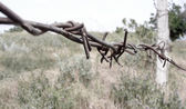 Chernobyl, barbed wire, Dirty broken abandoned places, vacant lots, contaminated land, fence posts, old post-Soviet space — Stock Photo
