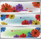 Colored flowers banners — Stock Vector