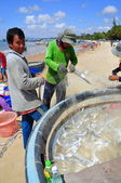 Lagi, Vietnam - February 26, 2012: Local fishermen are removing fishes from their fishing nets in the Lagi beach — Stock Photo
