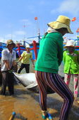 Phu Yen, Vietnam - February 28, 2012: Local fishermen are transporting tuna fish from their vessels to the stretcher and bring it to the testing house in Tuy Hoa seaport — Stock Photo