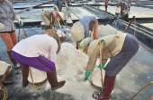 Ninh Hoa, Vietnam - March 2, 2012: Vietnamese women are burdening hard to collect salt from the extract fields to the storage fields — Stock Photo