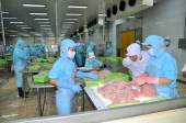 Can Tho, Vietnam - July 1, 2011: Workers are working in the processing line of pangasius catfish in a seafood factory in the Mekong delta of Vietnam — Stock Photo