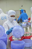 Vung Tau, Vietnam - December 9, 2014: Workers are packaging product for export in a seafood factory in Vietnam — Stock Photo