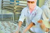 Phan Thiet, Vietnam - December 11, 2014: A workers is drying squids for exporting in a seafood factory in Vietnam — Stock Photo
