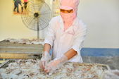 Phan Thiet, Vietnam - December 11, 2014: Workers are peeling dry squids for exporting in a seafood factory in Vietnam — Stock Photo