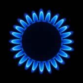 Natural gas flame — Stock Vector