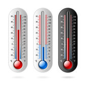 Celsius and Fahrenheit Thermometer — Stock Vector