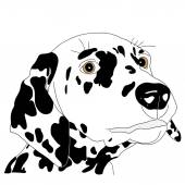 Spotty dog with trailing ears. — Stock Vector