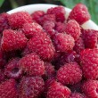 A plate full of fresh ripe raspberries with green leaf raspberry — Stock Photo #77089559