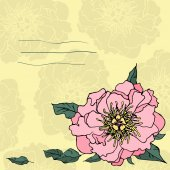 Hand drawn beautiful peony flower — Vecteur