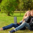 Teenage couple studying with a laptop in the park — Stock Photo #70336979