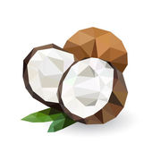 Vector illustration of a coconut — Stock Vector