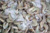 Fresh shrimp at the market,Thailand — Stock Photo